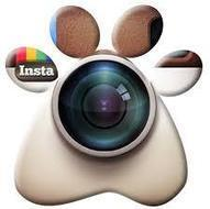 Buy 1 million Instagram Followers - buy instagram followers   Socialmedia   Scoop.it