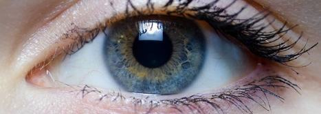 6 Foods that Naturally improve the Health of your Eyes | Nutrition Today | Scoop.it