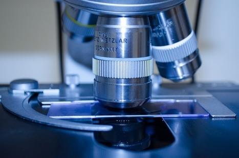 La impresión 3d celular reducirá la experimentación con animales | Impresión 3D | Scoop.it