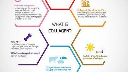 what's collagen | robinjoen | Scoop.it