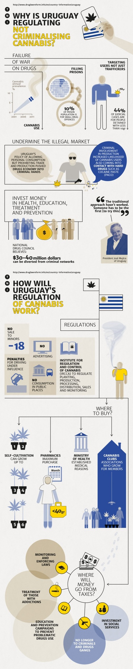 Drugs and Democracy | Uruguay's historic cannabis regulation explained | Cannabis News | Scoop.it