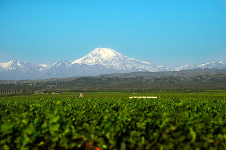 To Move Beyond Malbec, Look Below the Surface | Grande Passione | Scoop.it