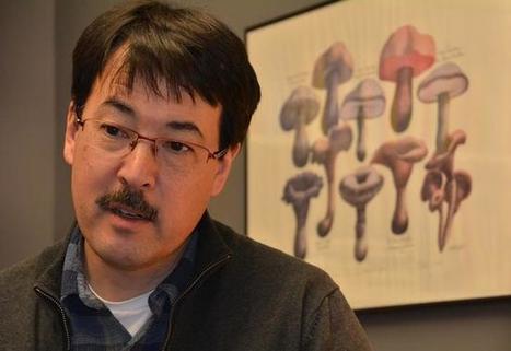 Sunday Sitdown: Clark prof David Hibbett studies fungi, genetics | MycorWeb Plant-Microbe Interactions | Scoop.it