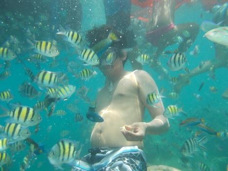 pulau tidung pewe | pulau tidung | Scoop.it