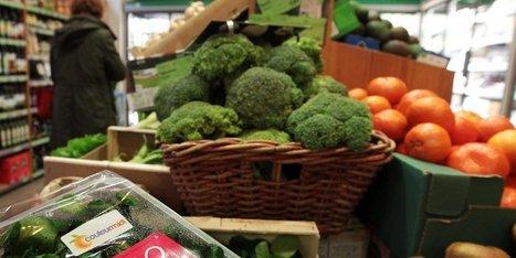 C'est le grand boom du bio en France et dans le Sud-Ouest | Agriculture en Dordogne | Scoop.it