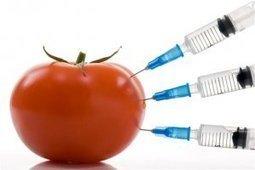 Produits chimiques dans l'alimentation: Comment y échapper? | Toxique, soyons vigilant ! | Scoop.it