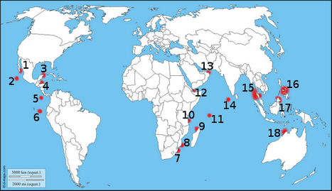 Destinations requin baleine ☺ Couleurs d'Aurore | My topics | Scoop.it