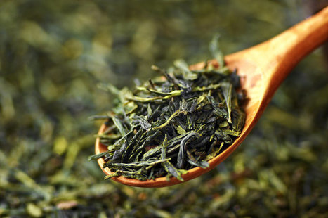 World's Oldest Tea Discovered In An Ancient Chinese Emperor's Tomb | Erba Volant - Applied Plant Science | Scoop.it