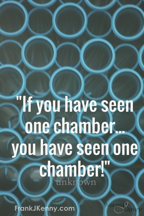 Chamber Professionals, Your World Has Changed | Chambers, Chamber Members, and Social Media | Scoop.it