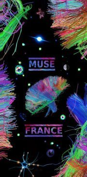Muse France | The Awesome Muser | Scoop.it