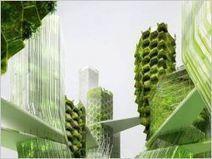 L'Etat subventionne un projet de micro-algues en façade - Batiactu   Les-materiaux-ecologiques.fr   Scoop.it