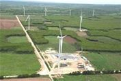 IFC promotes sustainable energy oppportunities in the Caribbean - Dominican Today | Energy in the Caribbean | Scoop.it