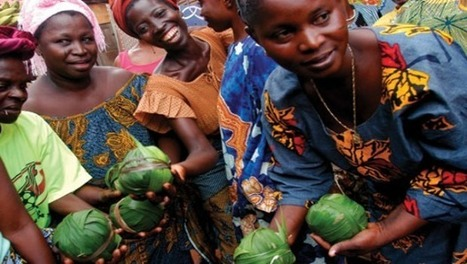 Microfinancing Opens Entreprenuism To African Women | Change The World | Scoop.it