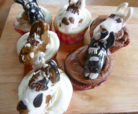 Check out these too-cute and very unique cupcakes Andrea Von Dragon found for us - Move over moose cupcakes, here are llama cupcakes | Childrens Tea Party Ideas | Scoop.it