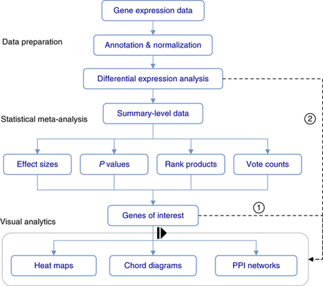 NetworkAnalyst for statistical, visual and network-based meta-analysis of gene expression data | Databases & Softwares | Scoop.it