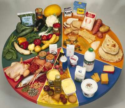 A Balanced Diet for Learning andTeaching   leading and learning   Scoop.it