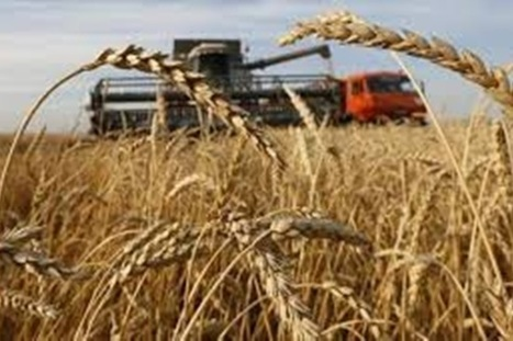 Extreme weather increasing level of toxins in food, scientists warn | The Financial Express | GarryRogers Biosphere News | Scoop.it