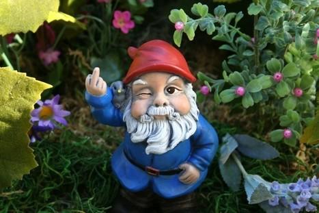 The Bluenose Gnomes Cov Vs BCFC Match Verdict..... | bcfc | Scoop.it
