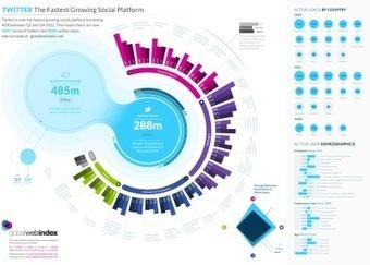 Twitter: la red social que más rápido crece #infografia | Educación a Distancia y TIC | Scoop.it