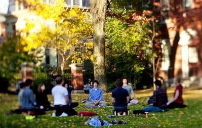 Paper proposes neural basis for meditation benefits | Brown University News and Events | mindfulnesstherapy | Scoop.it