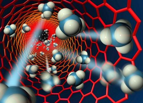 El uso de la química orgánica en la nanociencia y nanotecnología - e-consulta | PURA MENTE QUIMICA | Scoop.it