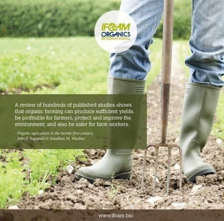 Organic Agriculture is key to feeding the world sustainably | IFOAM | Questions de développement ... | Scoop.it