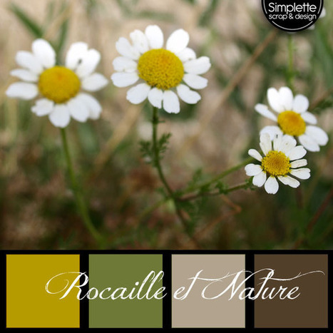 Simplette's palettes - free - gratuit - INSPIRATION (2) | Photographisme | Scoop.it