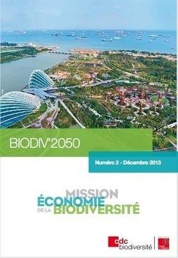 La Mission Économie de la Biodiversité a publié sa seconde lettre d'actualités - Biodiv'2050 - Synergiz - Synergiz | Veille biodiv | Scoop.it