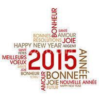 Une bonne année 2015 pour avoir les bons placements! | Cyril JARNIAS - Le Blog Gestion de Patrimoine, Assurance vie et Finance | Business | Scoop.it