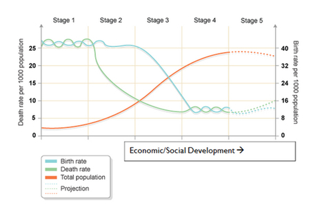 The Demographic Transition Model (DTM) | Geography | tutor2u | DSODE Preliminary Geography Global Challenges | Scoop.it