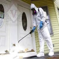 Why You Need Pest Control for Your Homes? | Zero Pest Solution | Scoop.it