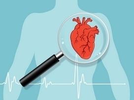 Wellness programs can counteract effects of heart disease | Corporate & Employee Wellness Programs | Scoop.it