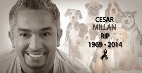 "The famous ""Dog whisperer"" Cesar Millan died of a heart attack this morning. 