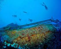 Artificial reefs are a master plan community - Joe's Scuba Shack | Scuba Diving | Scoop.it