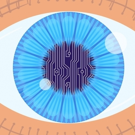 A second chance at sight | Physics as we know it. | Scoop.it