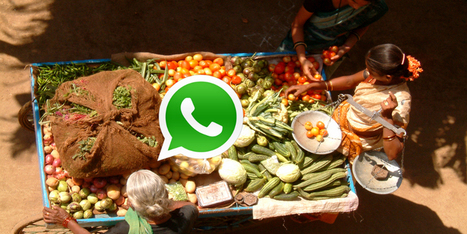 How Whatsapp is changing the way businesses work | Social Media - ES | Scoop.it