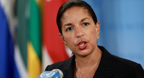 Too Much Starch for Susan Rice to be Considered Healthy for America | Animal Life | Scoop.it