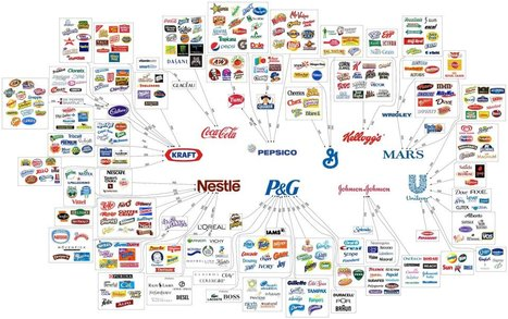 Top 10 Companies in the US that Control Your Choices | Social Media and Social Good | Human Geography | Scoop.it