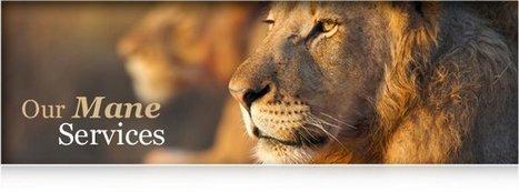 The Lion Press | The Lion Press | Scoop.it
