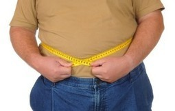 6.4 Trillion Reasons Why Obesity Is On The Wane - Forbes   food   Scoop.it