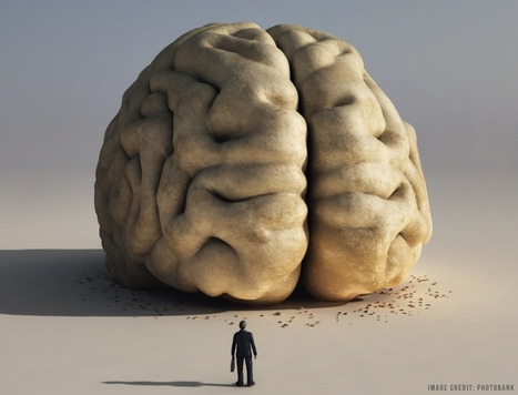 Meta-Learning: The Importance of Thinking about ThinkingLearning and the Brain blog | LETU Innovation in Teaching and Learning | Scoop.it