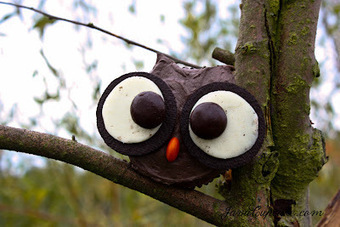 Cupcakes Take The Cake: Owl Cupcakes | CupCake Blog | Scoop.it