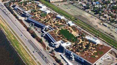 Facebook's new headquarters is ridiculous | Lean Startup Strategy | Scoop.it