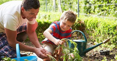 8 insecticides naturels et écologiques pour protéger votre jardin des nuisibles | Innovation durable | Scoop.it