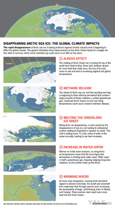 As Arctic Ocean Ice Disappears, Global Climate Impacts Intensify by Peter Wadhams: Yale Environment 360 | Eco issues | Scoop.it