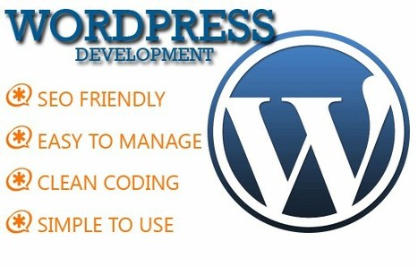 WordPress Web Design and Development Service Pakistan | Web Design and Development Services - Technogics | Scoop.it