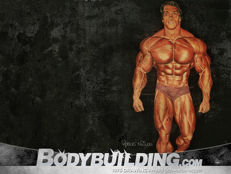 Wallpapers Fisicoculturismo Ufc Taringa ~ HD Wallpapers ... - PicWals   Body Building   Scoop.it
