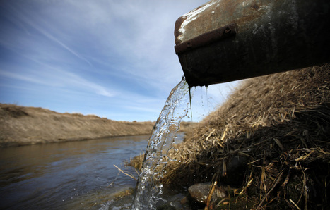 Nitrogen pollution widespread in southern Minnesota waters, report finds | Food issues | Scoop.it