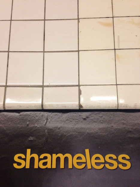 "Introducing Media Criticism Through Showtime's ""Shameless"" 