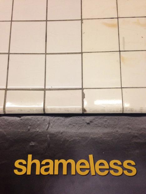 "Introducing Media Criticism Through Showtime's ""Shameless""   Educommunication   Scoop.it"